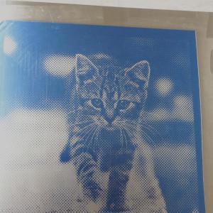 サンドブラストでアルミ板にネコを加工する 埼玉 ガラス工芸 ガラス彫刻 ガラス名入れ